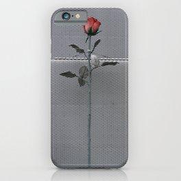 Roses and bricks iPhone Case