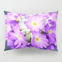 Primula denticulata in bloom Pillow Sham