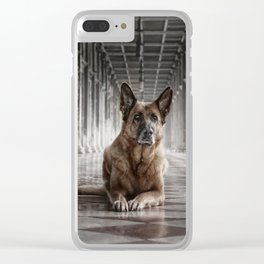 A German Shepherd in Venice Clear iPhone Case