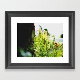 Fern. Framed Art Print