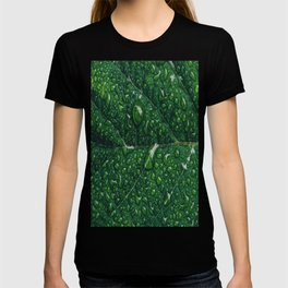 leaf dew drops T-shirt