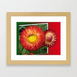 Flowers in the frame Framed Art Print