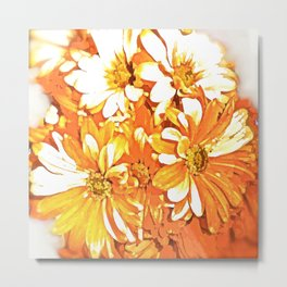 DAISY SPARKLE IN THE MORNING Metal Print