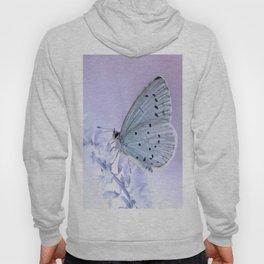 Butterfly 79 Hoody