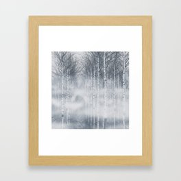 Aspen trees forest Framed Art Print