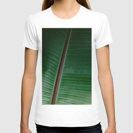 Botanical plant leaf with raindrops | Nature photography | Colourful minimalist gradient pattern T-shirt