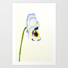 one  pansy Art Print