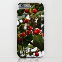 Holly Branch with Red Seeds iPhone Case