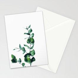 Eucalyptus branch Stationery Cards