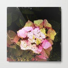 flower2 Metal Print