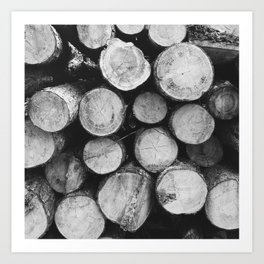 wood pile Art Print