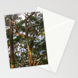 Gum Trees Stationery Cards