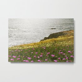 Vandy Land Metal Print