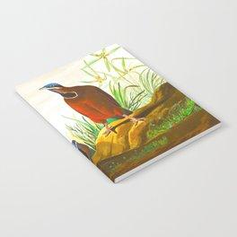 Blue-headed Pigeon Notebook