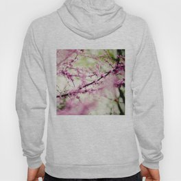 Into a Dream Hoody