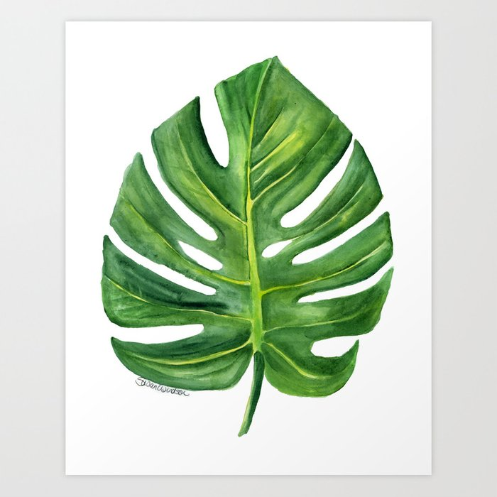 Watercolor Green Plants Monstera Nature Posters And Prints: Monstera Leaf Watercolor Painting Art Print By