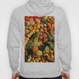 Colorful Autumn Hoody