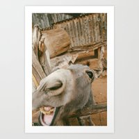 Smile....you're an ass! Art Print