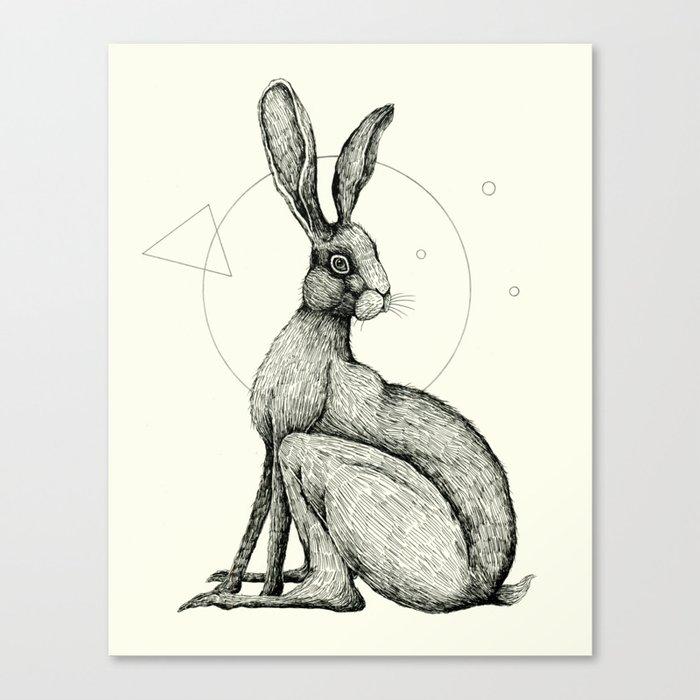 'Wildlife Analysis VI' Canvas Print