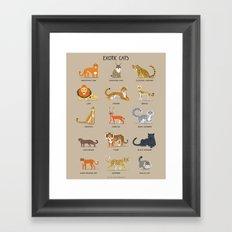 Exotic Cats Framed Art Print
