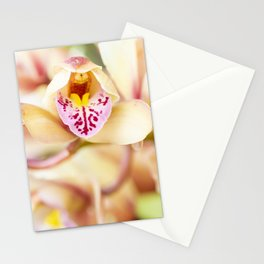 Pink and yellow orchids Stationery Cards