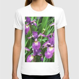 LILAC PURPLE IRIS GARDEN T-shirt