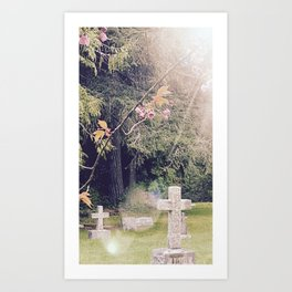 Cemetery, St. John's Anglican Church, Cobble Hill B.C. Art Print
