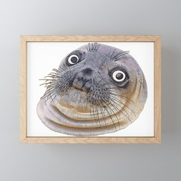 Seal Face Funny Pinnipeds Afraid Mistake Caught Act Framed Mini Art Print