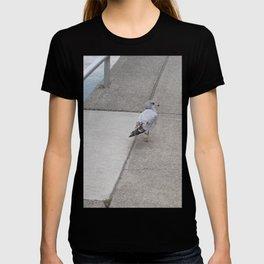 Dockside Stroll T-shirt