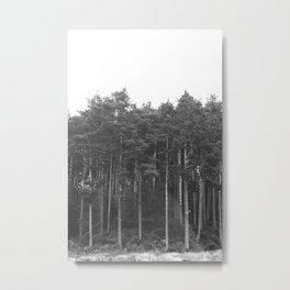A Dream in nature Metal Print