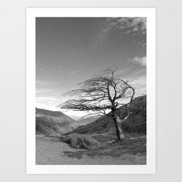Lonely Cardrona Art Print