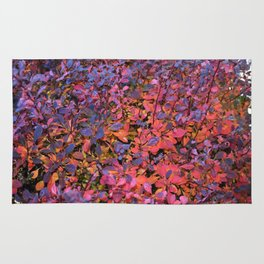 Colorful Fall Leaves Rug