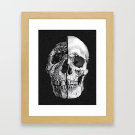 Evolutionary Study of the Human Skull Framed Art Print
