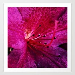 Purple Sparkle Art Print