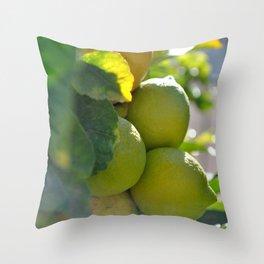 Lemons & Limes Throw Pillow
