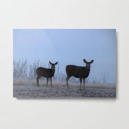 My Darling Deer Metal Print