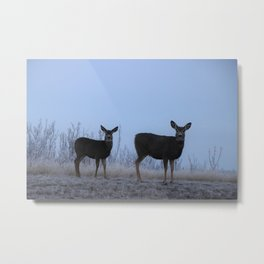 My Darling Deer Metal Print