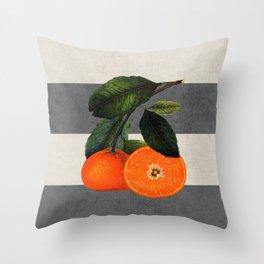 botanical stripes 6 -gray Throw Pillow