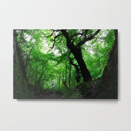 Enchanted Forest - Study VIII Metal Print