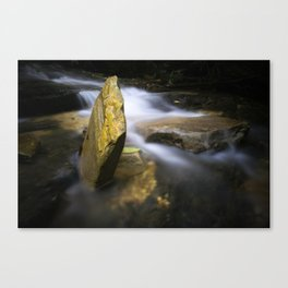 Fall As They May Canvas Print
