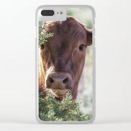 Shy Calf Clear iPhone Case