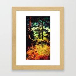 Magic Place, Stoney Hill, Vancouver Island Framed Art Print
