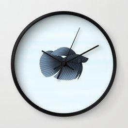 betta splendens black veiltail male Wall Clock