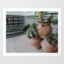 Cactii Art Print