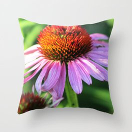 Cone Flower or Echinacea in Horicon Marsh Throw Pillow