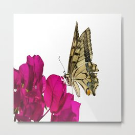 Swallowtail Butterfly On Bougainvillea Metal Print