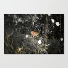 Didi the Deer Canvas Print