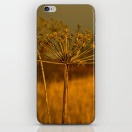 In the Grass iPhone Skin
