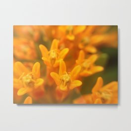 Flower friends Metal Print