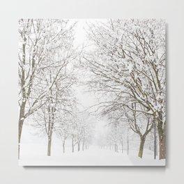 SnowLand Metal Print